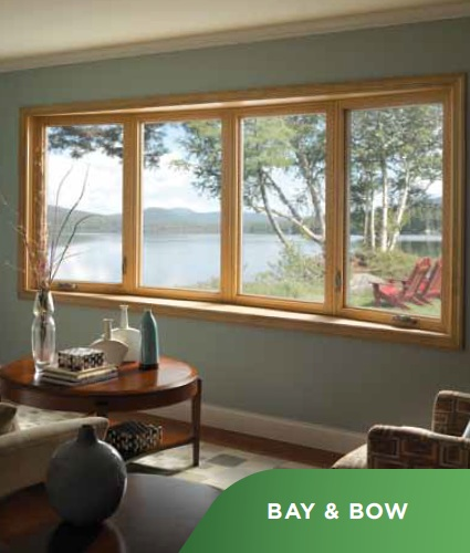 best double hung windows for home replacement window companies vanguard. Black Bedroom Furniture Sets. Home Design Ideas